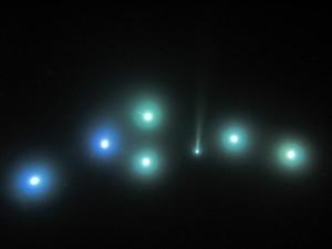 ライトトラップの光景。